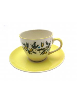 James Kent Springtime Pattern 6433 Coffee Cup & Saucer