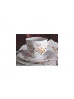 Winterling Schwarzenbach floral pattern Cup and Saucer