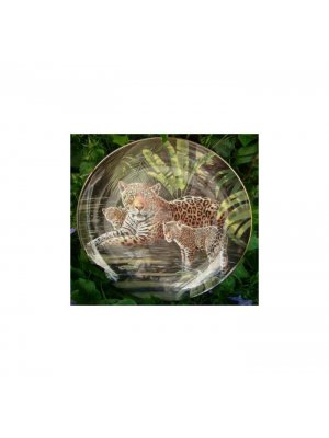 Collector plate Compton and Woodhouse Wedgwood Amazon Jaguars plate CPO_81/CP2366