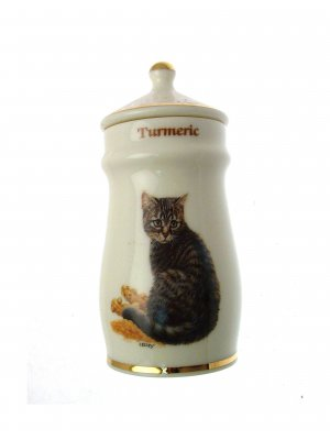 Lesley Anne Ivory Cats Spice Jar Turmeric GB375