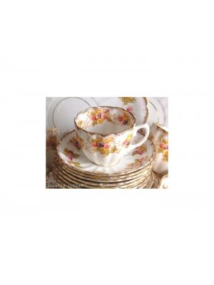 Wild Brothers Edna pattern 1543 Cup and Saucer